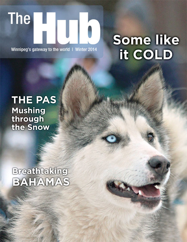 The Hub Winter 2014